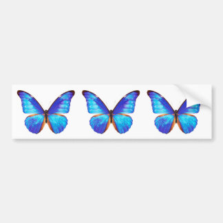"The superior product ""of Morpho"" Bumper Sticker"
