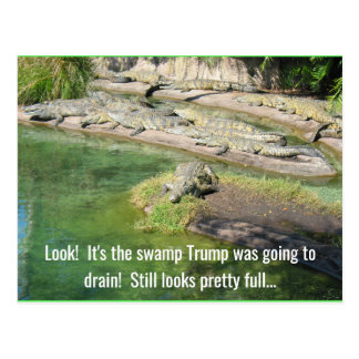 The swamp looks full postcard