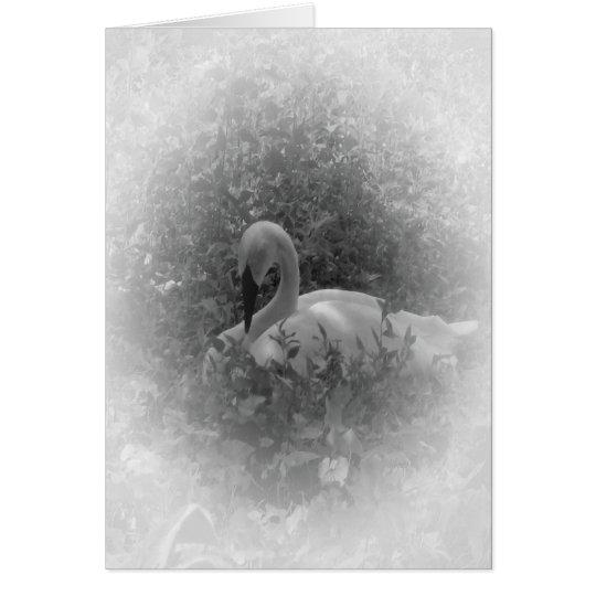 The Swan Card