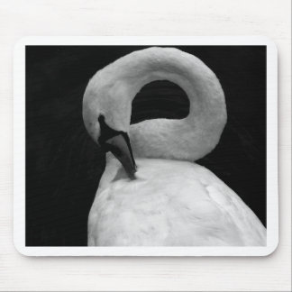 The swan mousepads