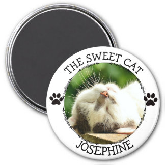 THE SWEET CAT: Humorous  Pawprints Photo Button 7.5 Cm Round Magnet