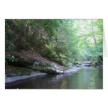 The Swimming Hole 042 Greeting Card