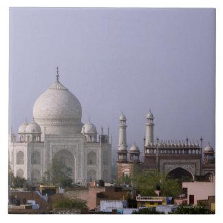 the Taj Mahal dominates the town of Agra Tile