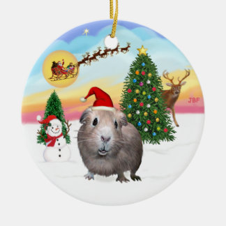 The Take Off - Guinea Pig #2 Christmas Ornament