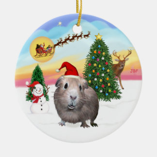 The Take Off - Guinea Pig #2 Christmas Ornament
