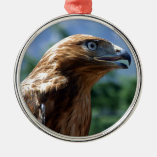 The tamed falcon christmas ornament