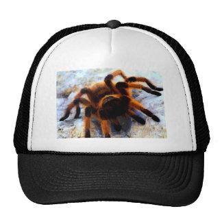 The Tarantula Cap