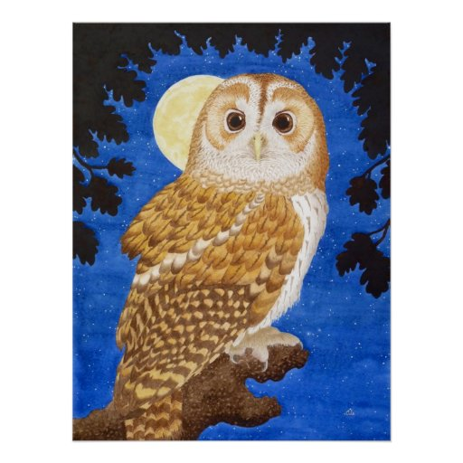 The Tawny Owl Poster