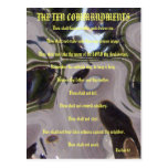 The Ten Commandments Brown Glass Postcard