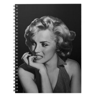 The Thinker Notebooks