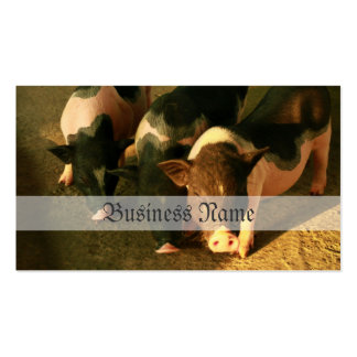 The Three Little Pigs Business Card Template