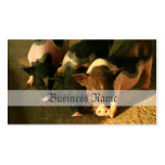 The Three Little Pigs Pack Of Standard Business Cards