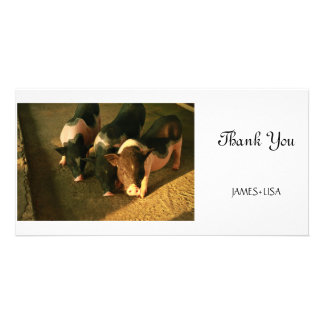 The Three Little Pigs Photo Card Template