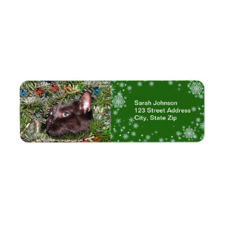 The tomcat in the Christmas tree  Label Return Address Label