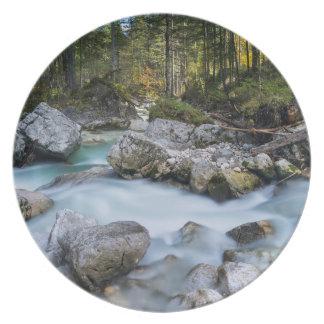 The torrent Ramsauer Ache Plate