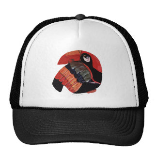 The Toucan Hats