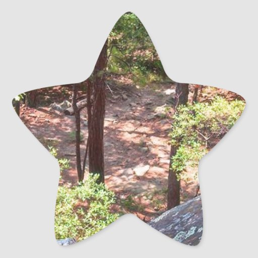 The Trail Back Down Star Sticker