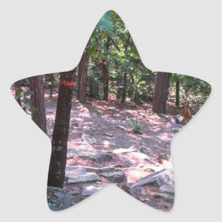 The Trail to Robber's Cave Star Sticker