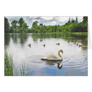 The Tranquil Lake Card