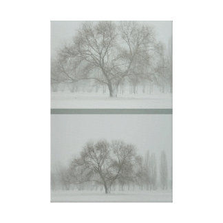 The tree. Approximation Gallery Wrapped Canvas
