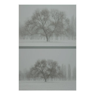 The tree. Approximation Poster