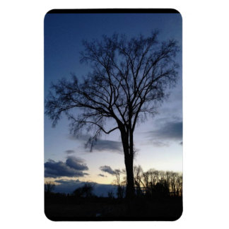 The Tree at Twilight Magnet