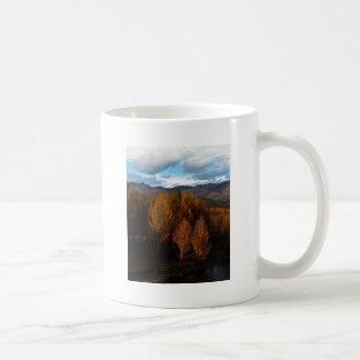 The tree growth in the Tibet Plateau Mug