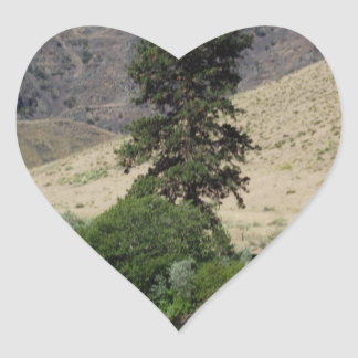 The Tree on the Other Side Heart Sticker