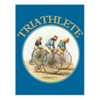The Triathlon of Chickens Post Card