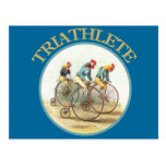 The Triathlon of Chickens Postcard