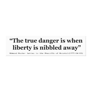 The True Danger is When Liberty is Nibbled Away Stretched Canvas Prints