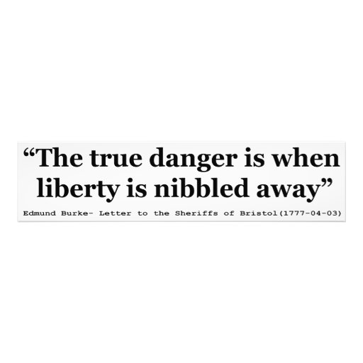 The True Danger is When Liberty is Nibbled Away Photo Art