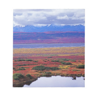 The tundra of Denali National Park in the late Notepad