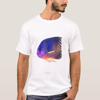 The two-spined angelfish T-Shirt