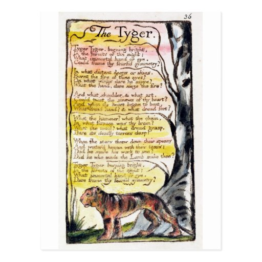 'The Tyger', plate 36 (Bentley 42) from 'Songs of Postcards