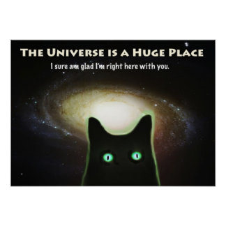 The Universe is a Huge Place ~ Cat in Space Poster