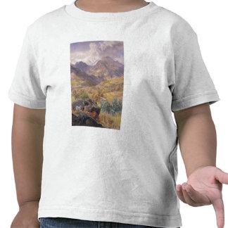 The Val d'Aosta, 1858 (oil on canvas) Tees
