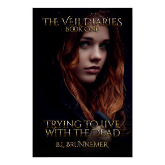 The Veil Diaries Book I Poster