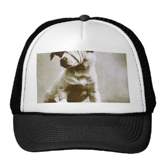 the victor mesh hats