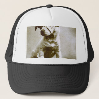 the victor trucker hat