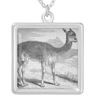 The Vicuna at the Rio de Azufre Silver Plated Necklace