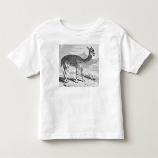 The Vicuna at the Rio de Azufre Toddler T-Shirt