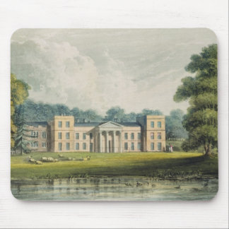 The Vine from the lake, from Ackermann's 'Reposito Mouse Pad