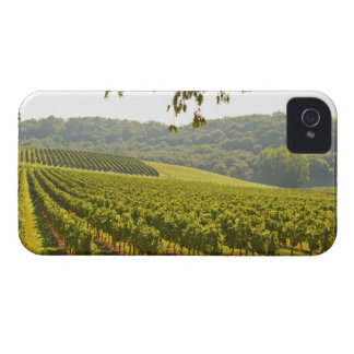 The vineyard and a valley with a forest - Case-Mate iPhone 4 case