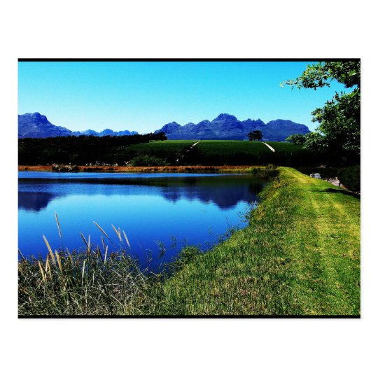 """The Vineyards of Stellenbosch"" JTG Art Postcard"