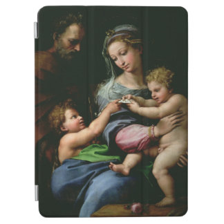 The Virgin of the Rose, c.1518 iPad Air Cover
