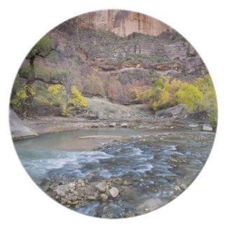 The Virgin River in autumn in Zion National Park Plate
