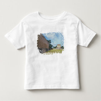 The wall of the Ball Court Toddler T-Shirt