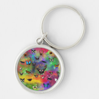 the waltz of the butterflies Silver-Colored round key ring