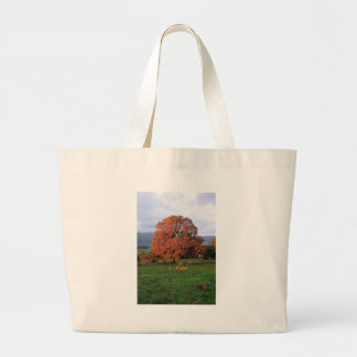 The Warmth of A Winter Sunrise Canvas Bags